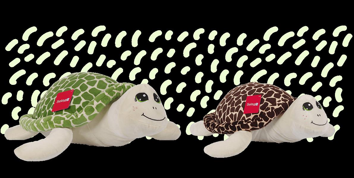 Kaplumbağa, Caretta